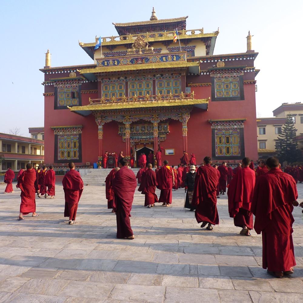 Népal, Katmandou, Shechen